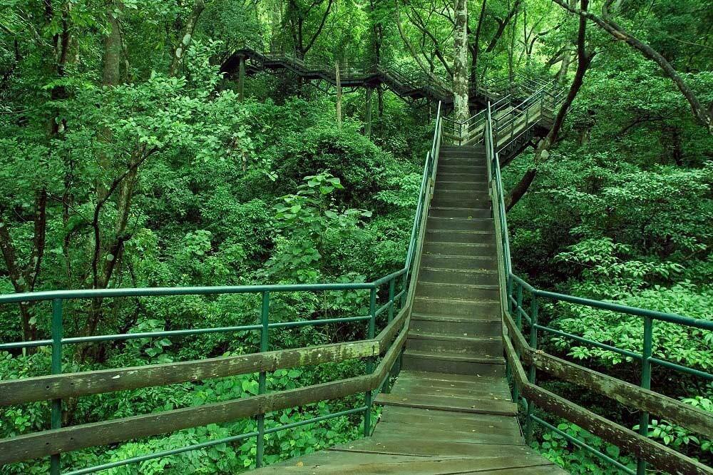 Thenmala Eco Tourism in Kerala