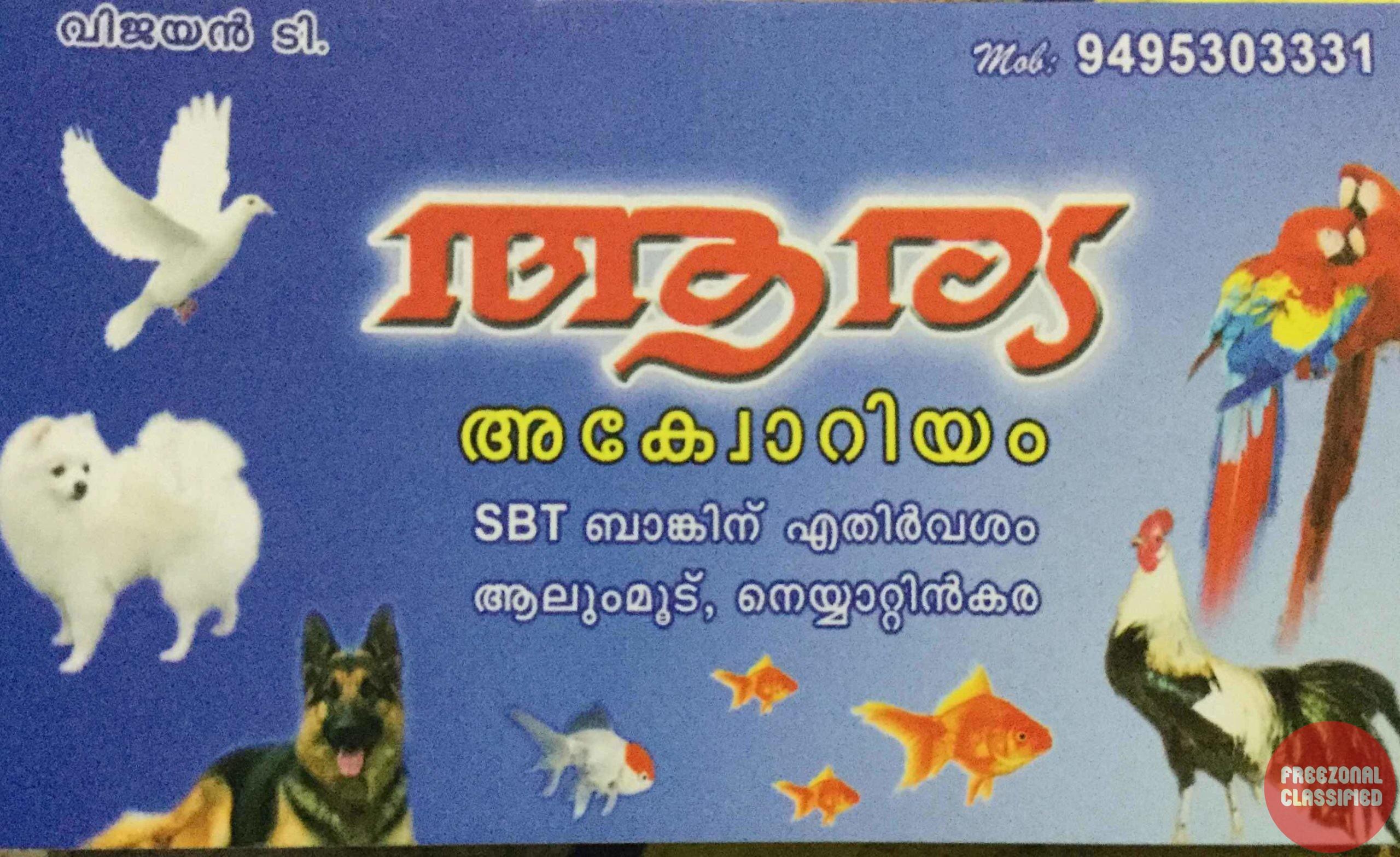 Arya Aquarium Pet Shop In Neyyattinkara Thiruvananthapuram Kerala Reviews Offers Contact Numbers Details Rating