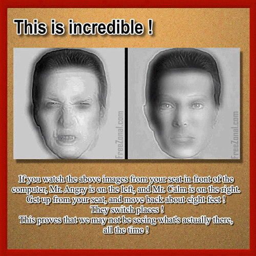 Switching Face Optical illusion